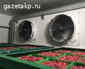 Оборудование для хранения -5/5 на камеру 100 м3
