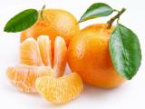 Интересные факты о мандаринах
