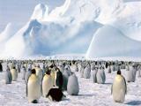 10 удивительных фактов о нашей планете